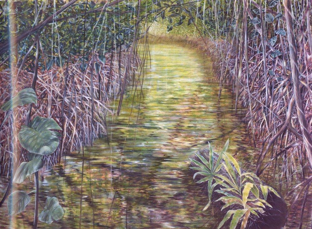 Everglades Missoni II   Oil on canvas, 52'' x 74'', 2003
