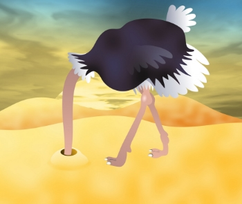Don't let this ostrich ruin your company.