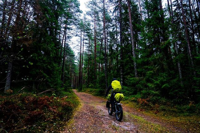 One of those forest days somewhere in Latvia :D