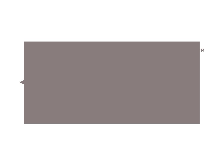 Allison-Henry-Branding-Bedell-Guitars.png