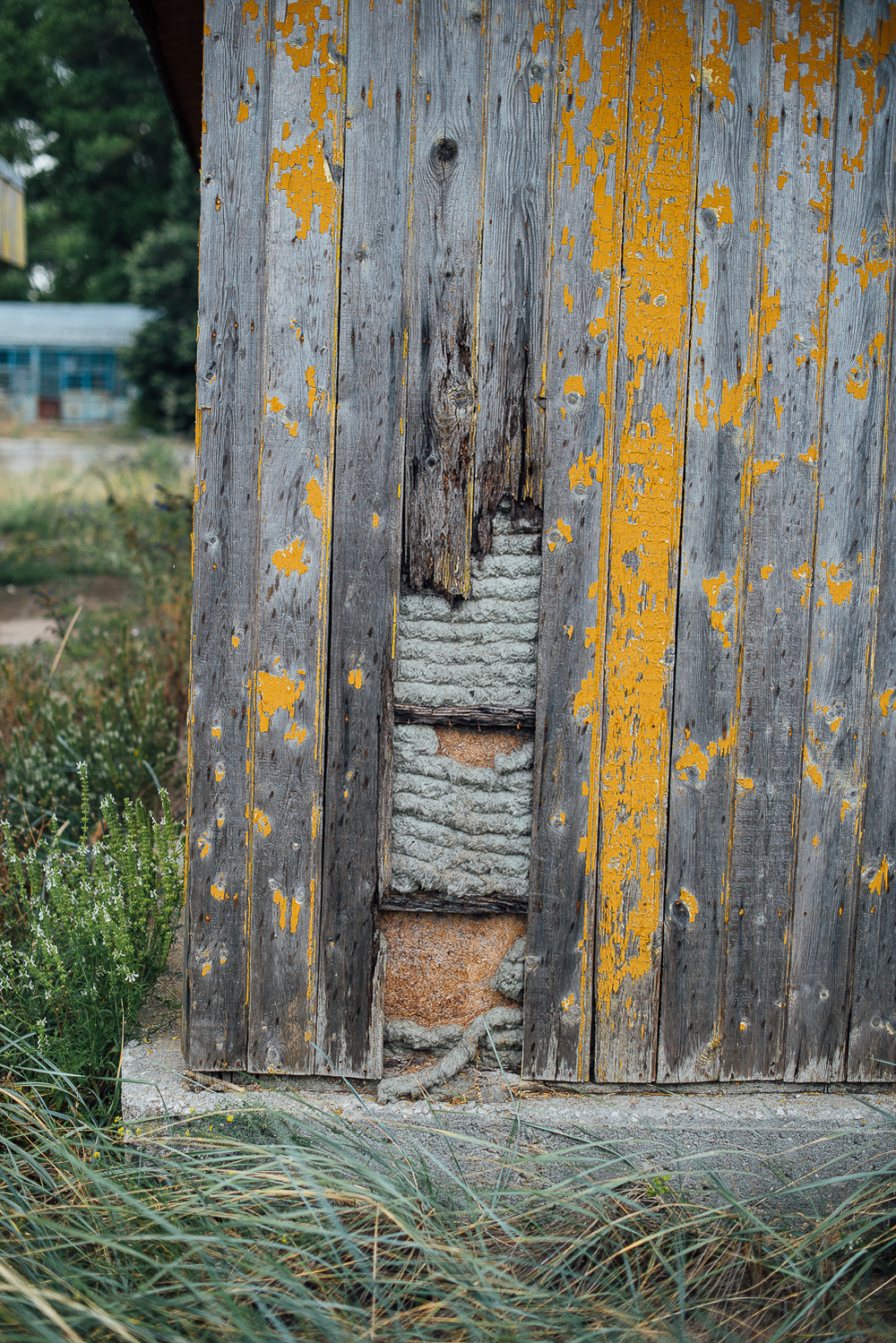 abandoned-summer-school-mariya-mileva-49.jpg