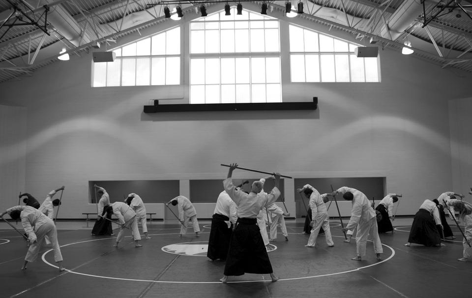 aikido-362959_960_720.jpg