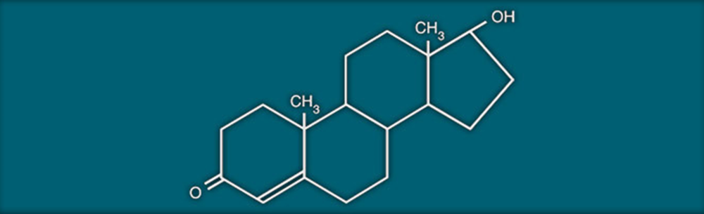 testosteronechemical.png