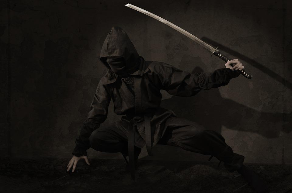 ninja-2007576_960_720.jpg