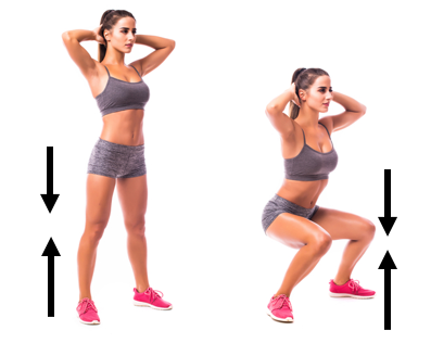 Force on the knee changes from standing to squatting position.