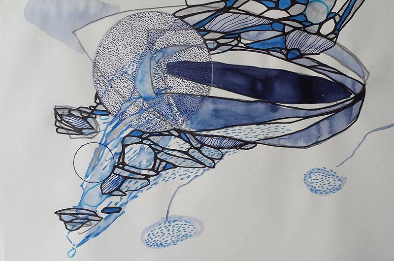 arctic-swim-drawing-4.png