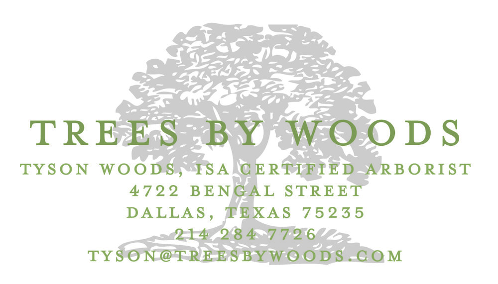 Woods - Business Cards-01.jpg
