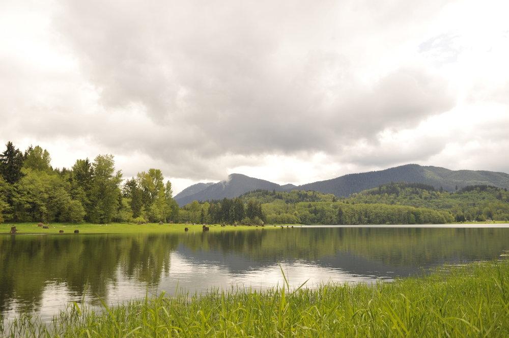 Mineral Lake, Washington
