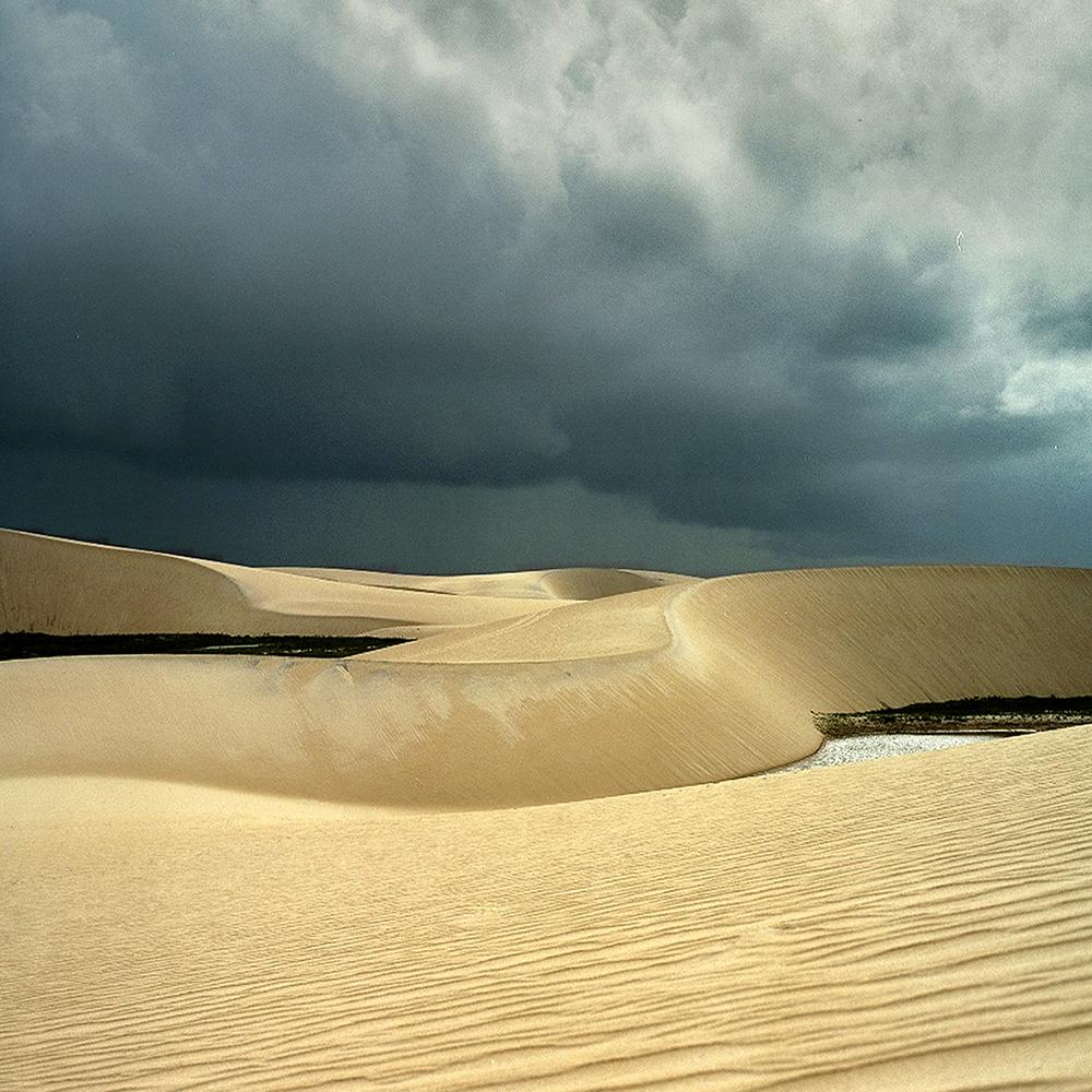 """Lost Dune II, 30"""" x 30"""", 2007"""