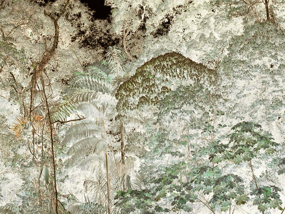 "Tiputini River,  Floral Edge   30"" x 40"", 2009"