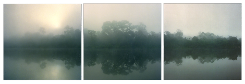 "Surinam Sunrise,   3 images, 30"" x 30"", 2005"