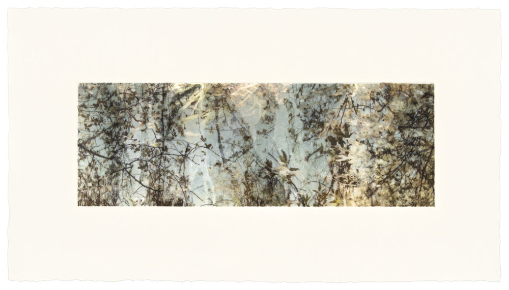 "Green Pond, 13"" x 26"", 2013"