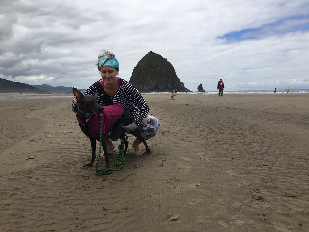 Oregon-Coast-Peruvian-Inca-Orchid