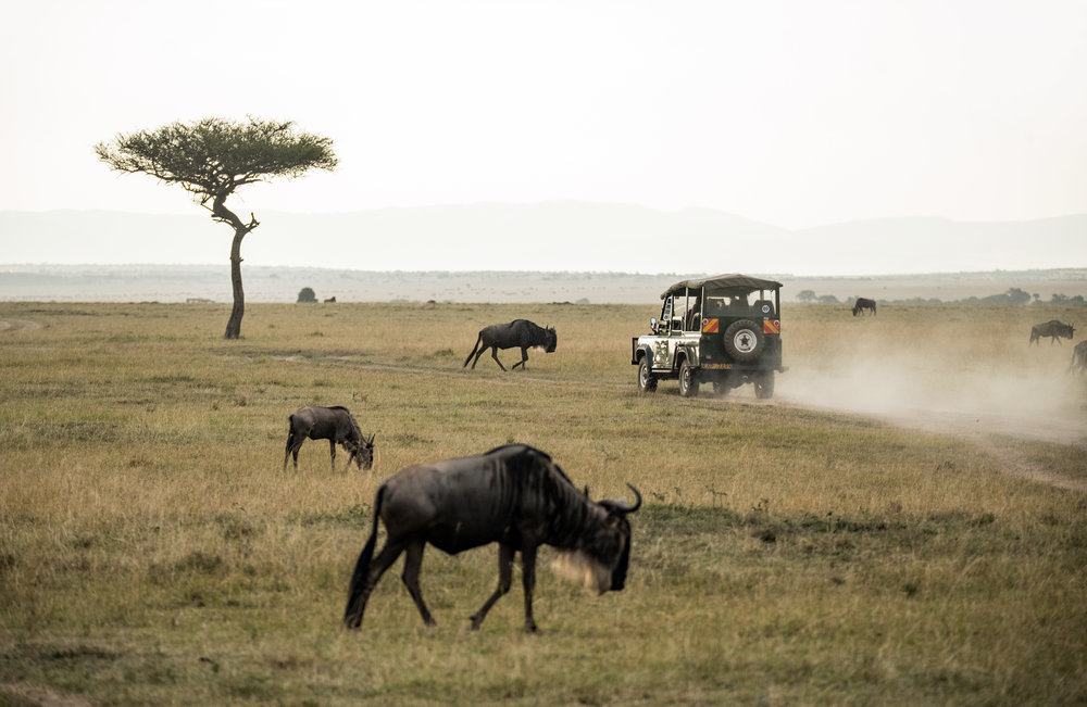 NAIVASHA. - 1 NIGHT IN THE WILD. You'll spend the day at Lake Naivasha National Park surrounded by animals in the wild, hike through gorges and take a boat ride along the stunning lake, surrounded by hippos. Fall asleep to the sound of crickets and wake up to the sight of giraffes.