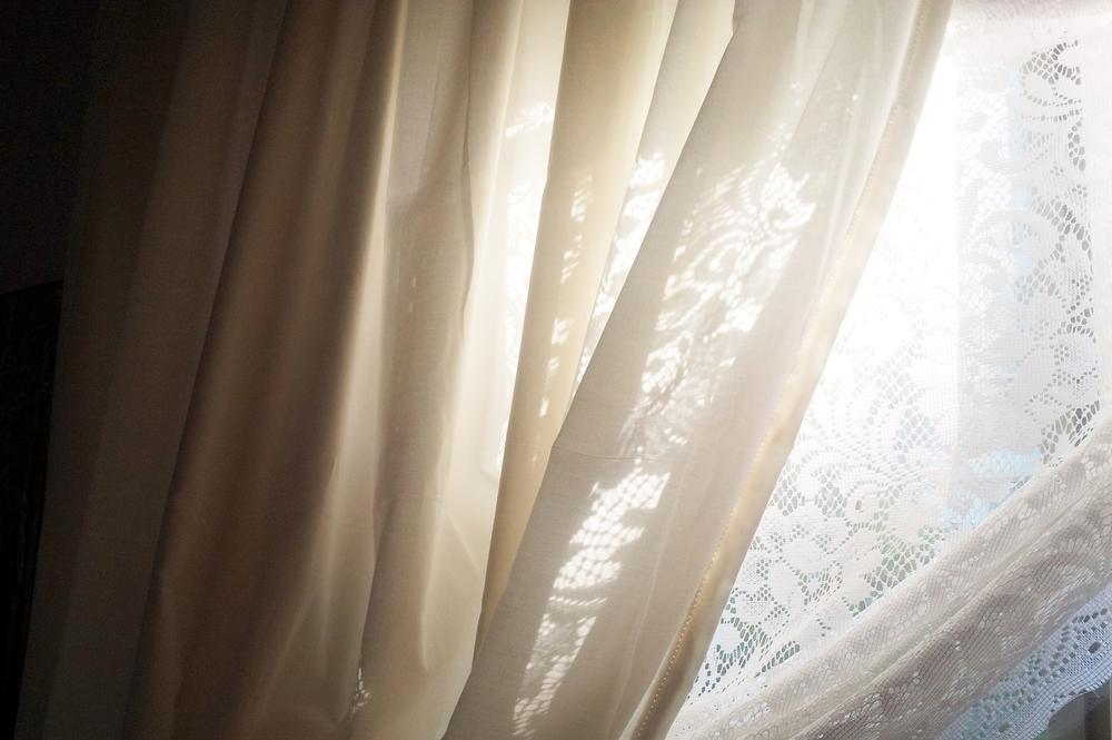 first light | seekthewelfare