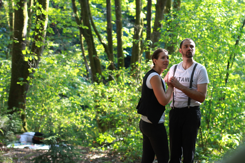 offroad shakespeare, seattle washington | seekthewelfare