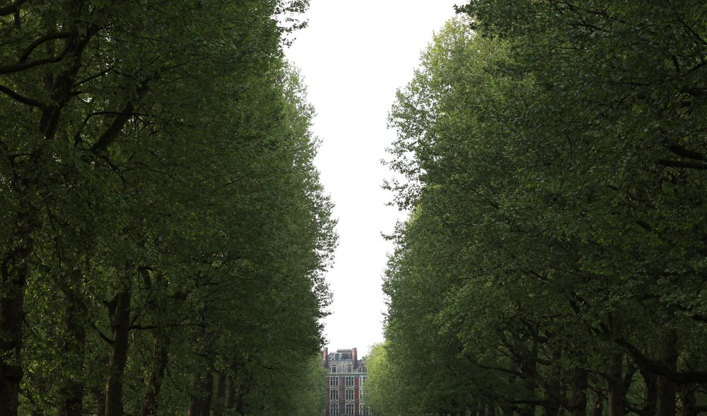 london, england | seekthewelfare