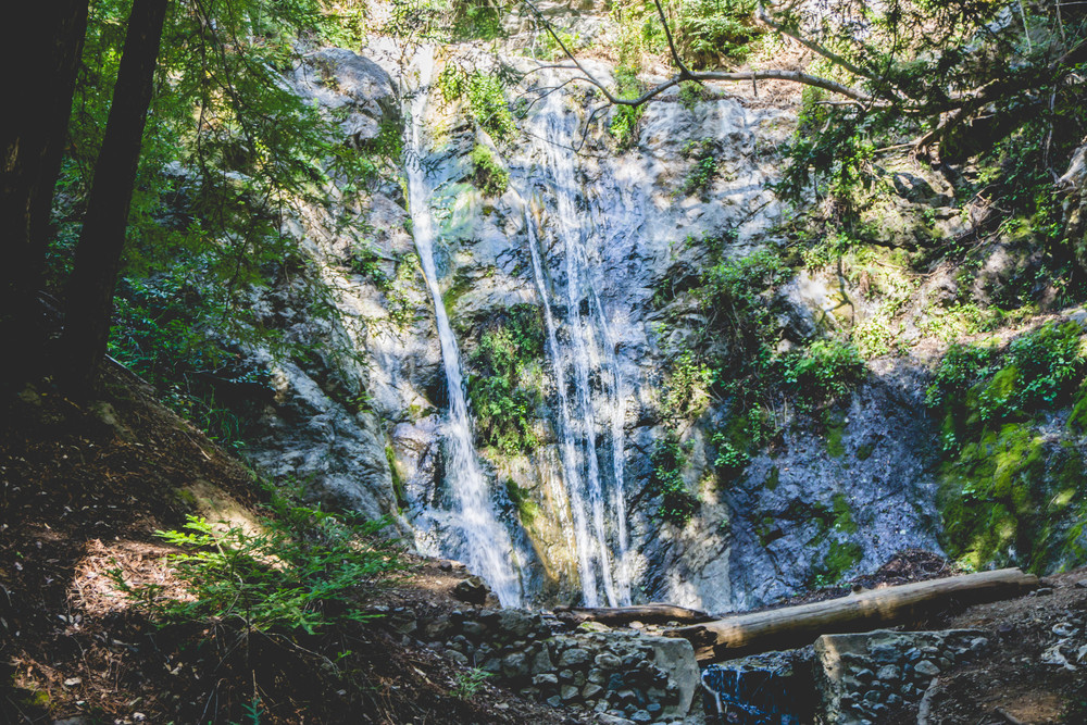 Pfeiffer Falls is the perfect hiking destination for beginners. It's a shaded 2 mile round trip trail with a quarter mile of stairmaster like incline.