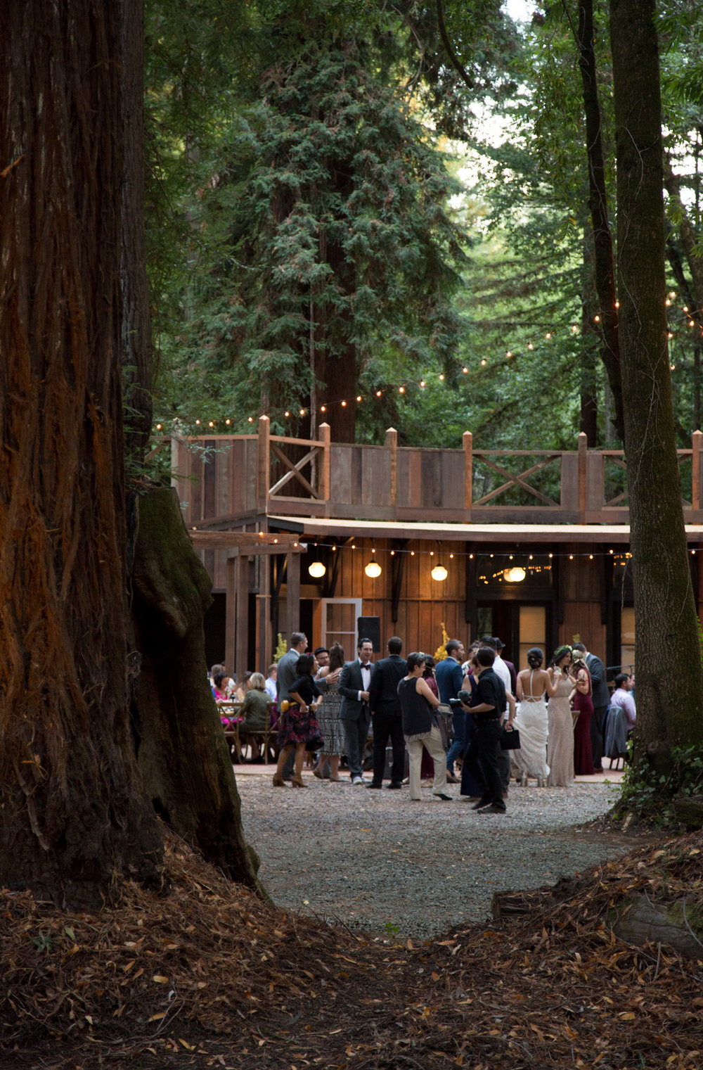 Wedding guests gather at the Redwood Pavilion at The Brambles in Philo, Anderson Valley, California