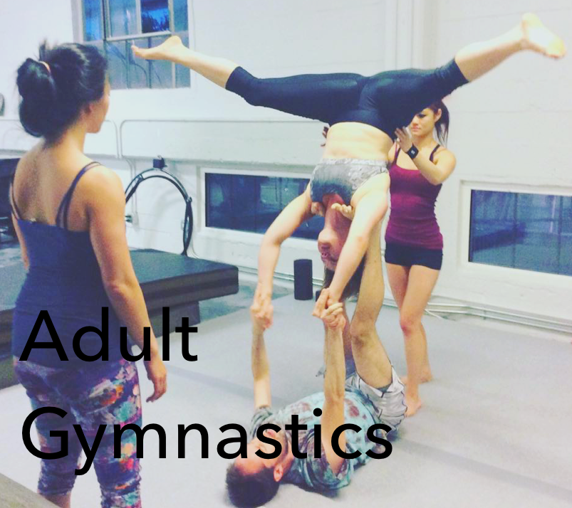 Adult Gymnastics.png