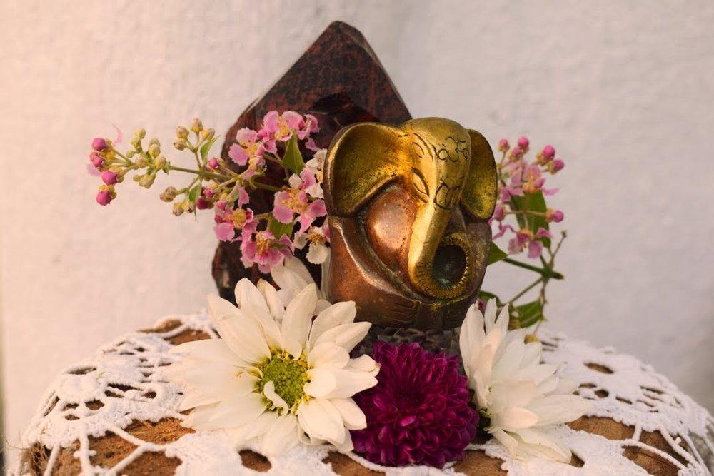04 Ganesha,jagubi flower, Fire&Aya Ceremony, 31.jan 18.jpeg