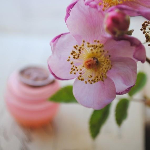 Photo by Roxana Illuminated Perfume