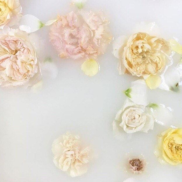 HOT BUBBLE BATH or FOOT MASSAGE?? After this week, a bubble bath with a glass of wine sounds amazing!!😅 ⠀⠀⠀⠀⠀⠀⠀⠀⠀ I know I'm not the only one! ⠀⠀⠀⠀⠀⠀⠀⠀⠀ What's your favorite self care treatment? ⠀⠀⠀⠀⠀⠀⠀⠀⠀ Photo by @elizabethmessina ⠀⠀⠀⠀⠀⠀⠀⠀⠀ #selfcare #milkbath #flowers #flowerslovers