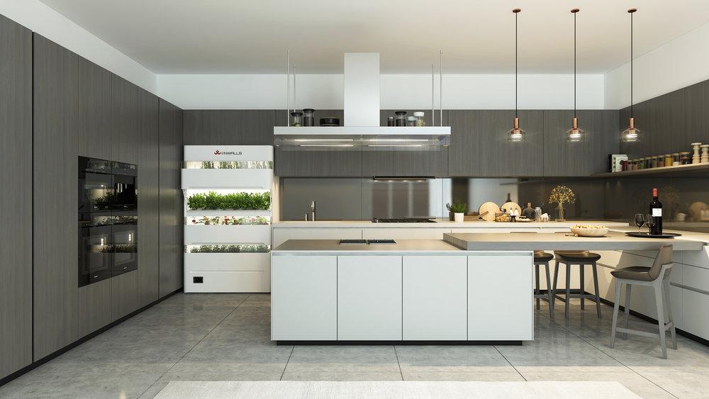 VNWALLS GARDEN placing in kitchen