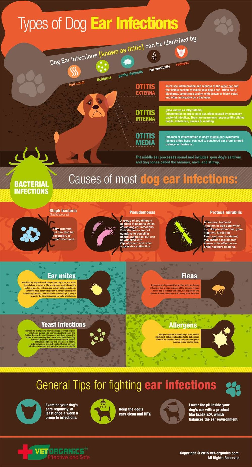 dog_ear_infographic_02-16.jpg