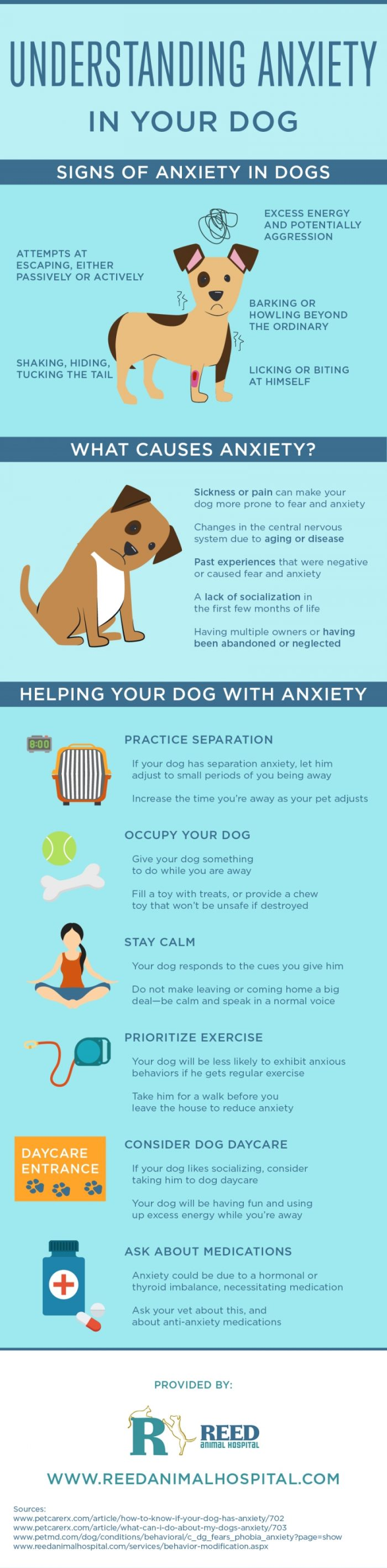 Understanding-Anxiety-in-Your-Dog-Infographic1-700x2831.jpg