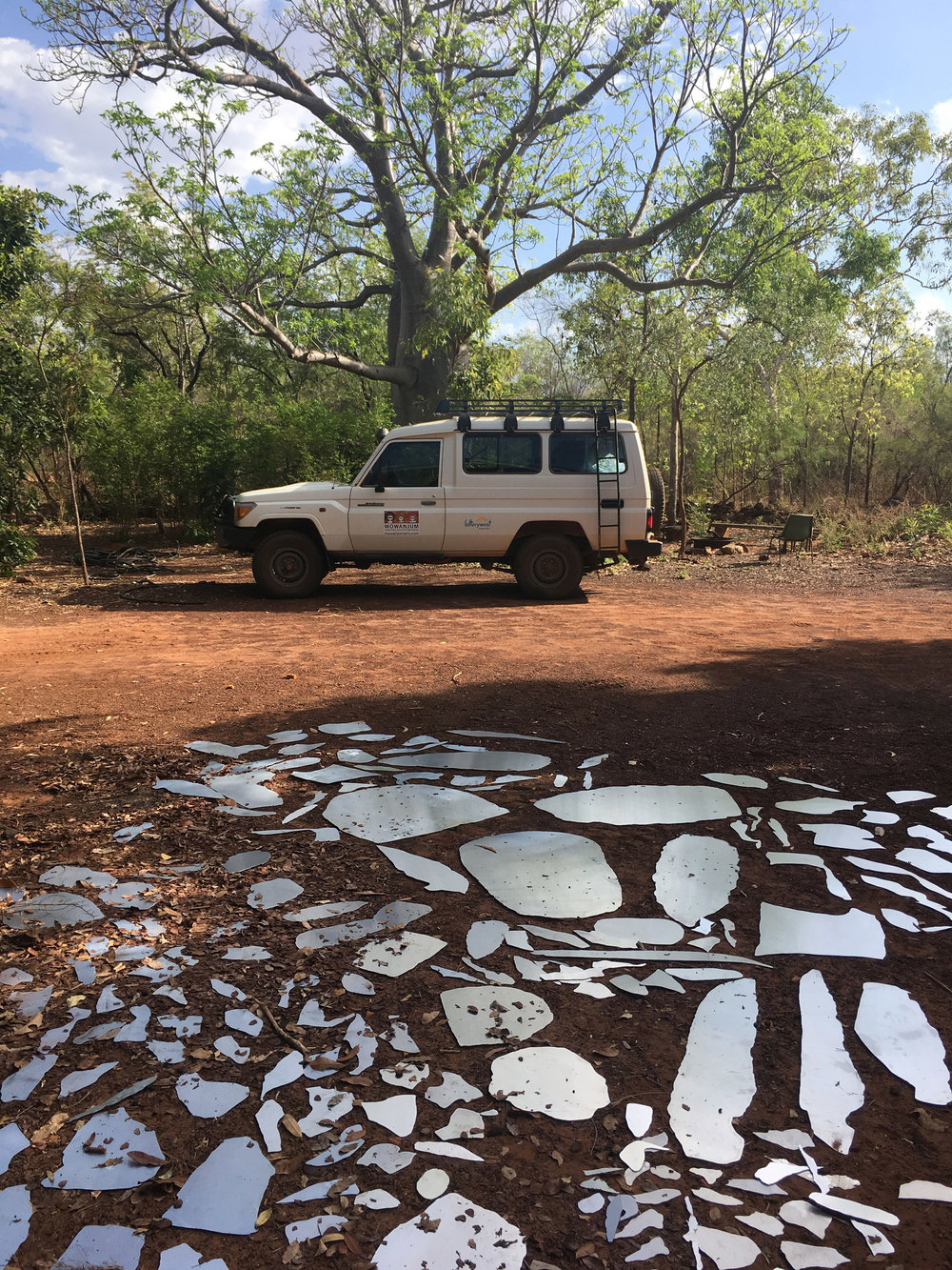 Aluminum printing plates left exposed to Kimberley environment and wildlife to accumulate marks before printing.