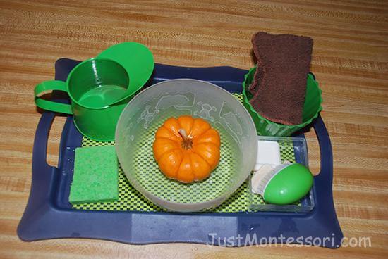 pumpkin-scrubbing