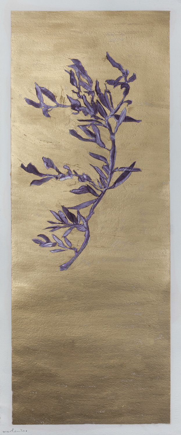 Olive branch, Ball point and oil on paper, 30X80 cm, 2014
