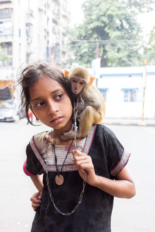 Gurudayal Khalsa Photography girl monkey india.jpg
