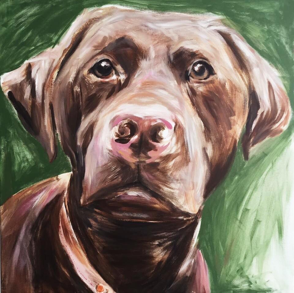 Adopt A Dog UK.jpg