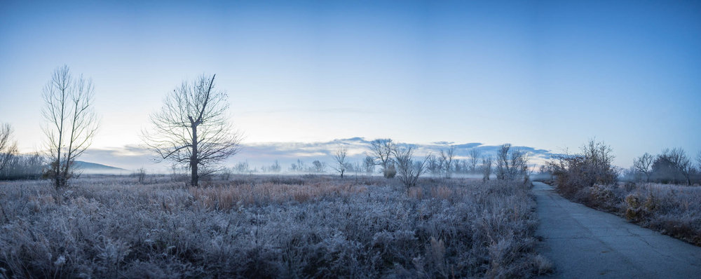 waking up to the frost. An enormous pile of mining waste can be seen to the left.