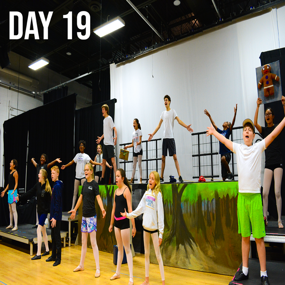 Day 19, Shrek Rehearsals, Aug 2nd 2018.png