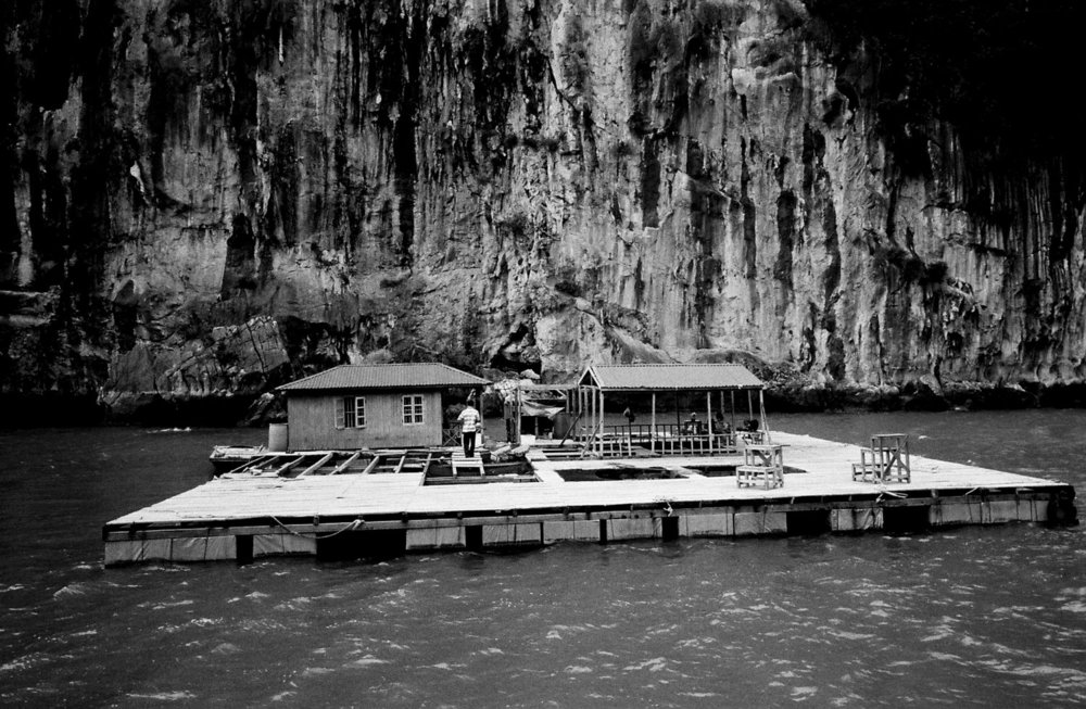 Floating Home   Ha Long Bay