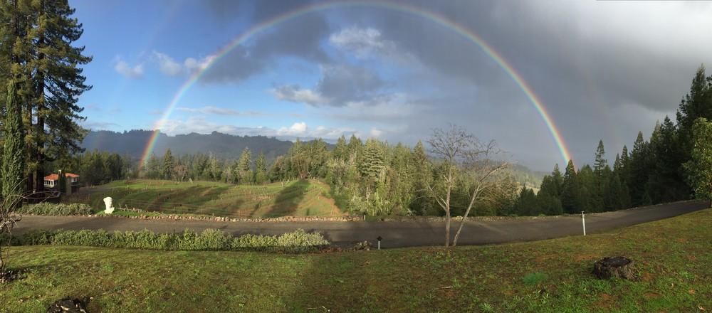 Rainbow Panarama Jan 2016.jpg