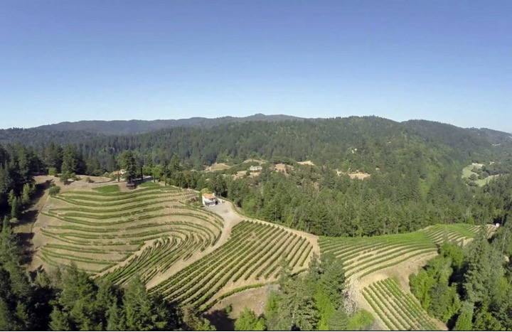 Famighetti Vineyards in Dry Creek Valley - Click Image to Learn More