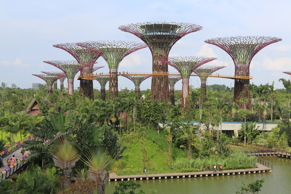 Supertree Grove, Gardens by the Bay, Singapore - Photo by shiny things on flickr
