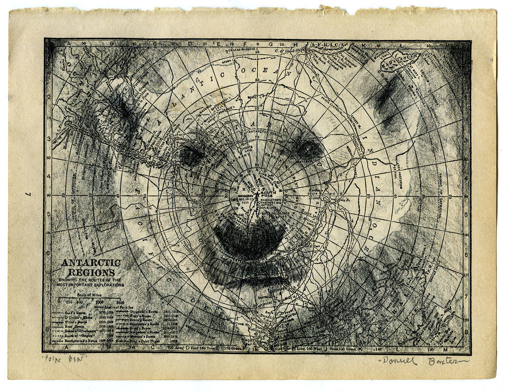 Arctic Polar Bear final art.jpg