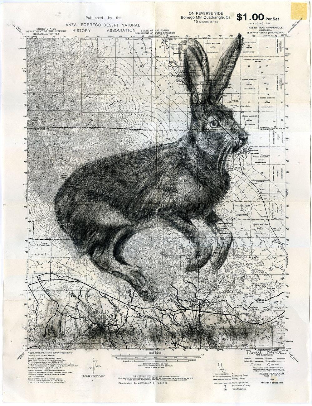 Daniel Baxter Jack Rabbit - Rabbit Peak art.jpg
