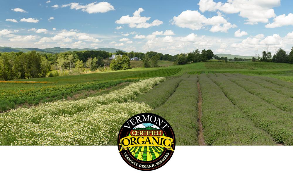 farm-pano-organic-2.jpg