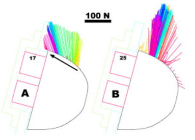 Figure 7. Different vector diagrams in World Cup climbers; left =  more experienced climber. Shorter contact time = shorter vectors; higher friction = greater inclination of force vectors (Fuss & Niegl, 2008) (Copyright Sport Technol 1 (6): 301–313, 2008)
