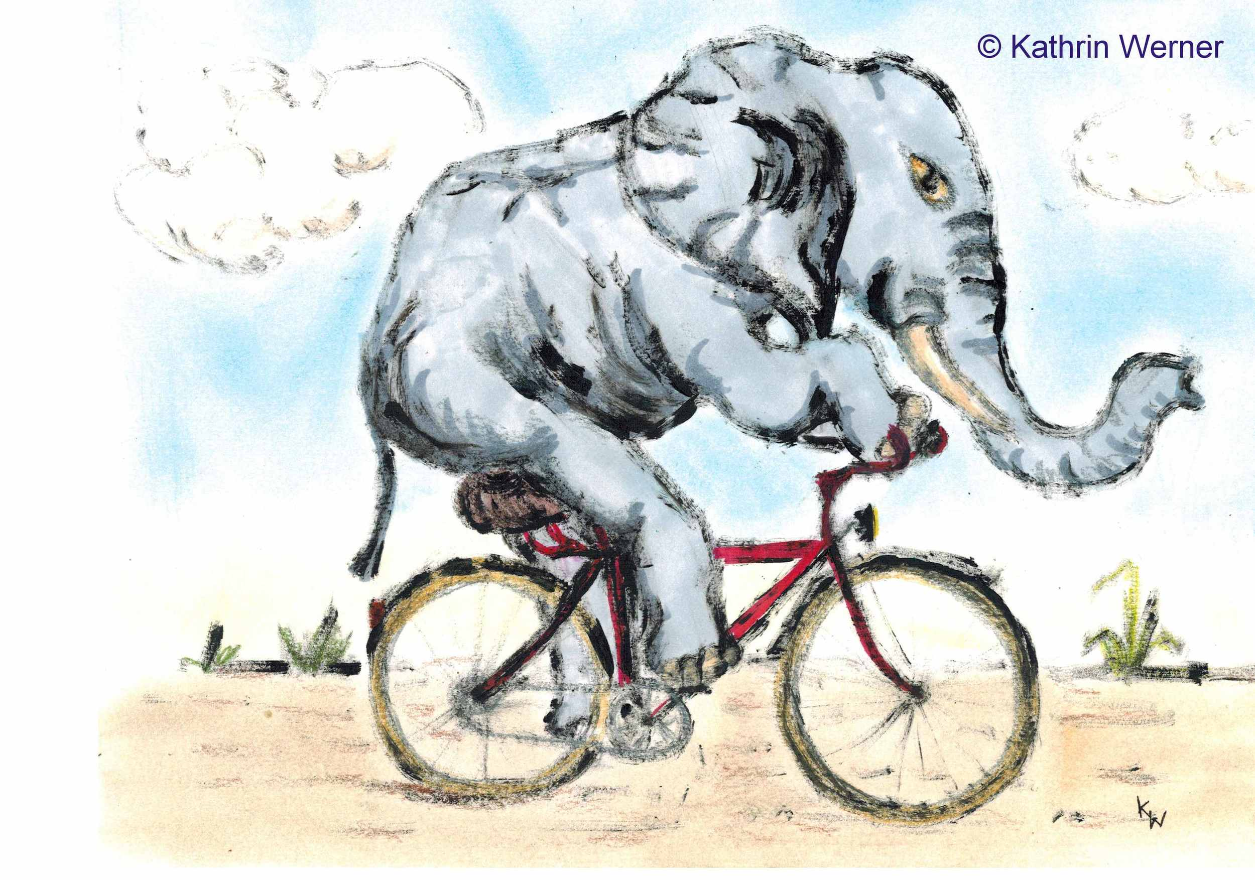 cyclingelephant1