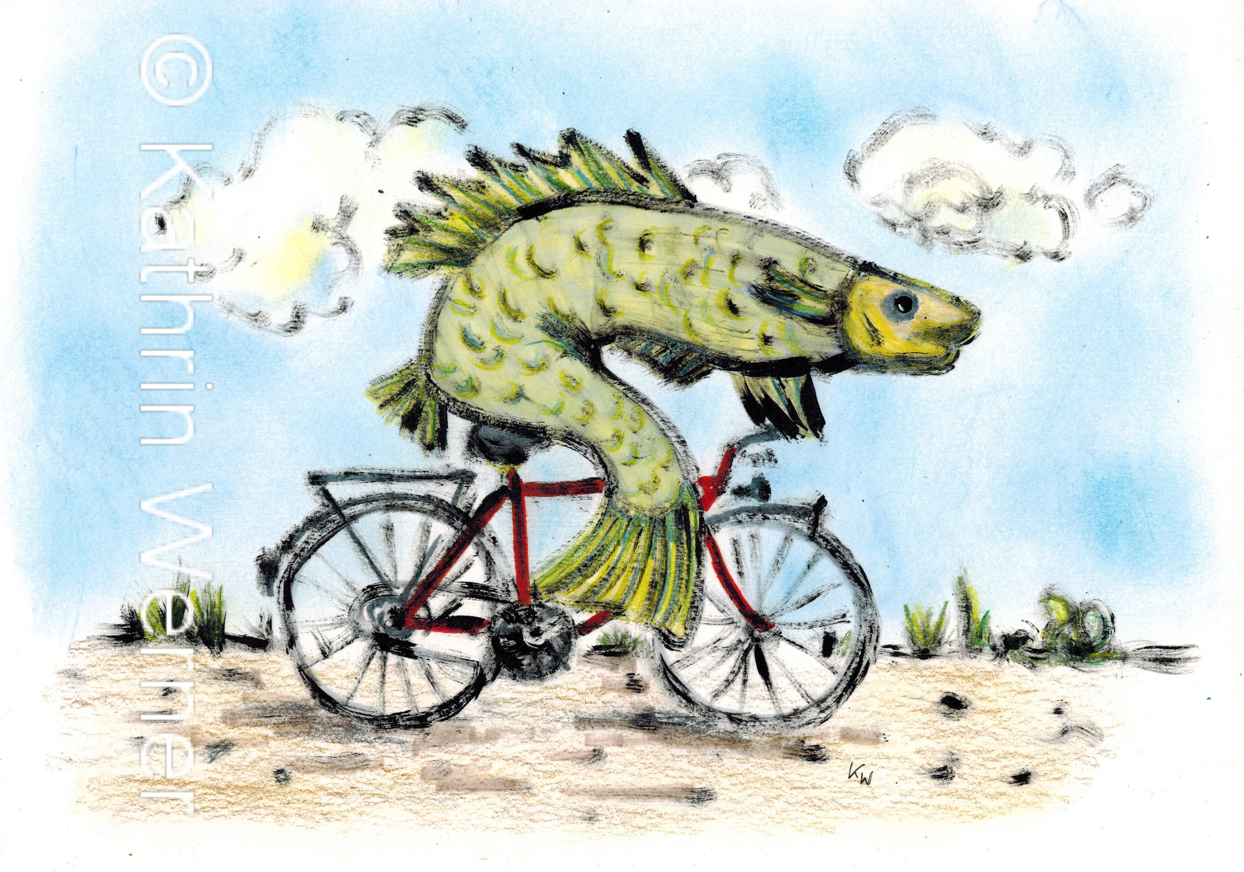 cyclingfish_WZ