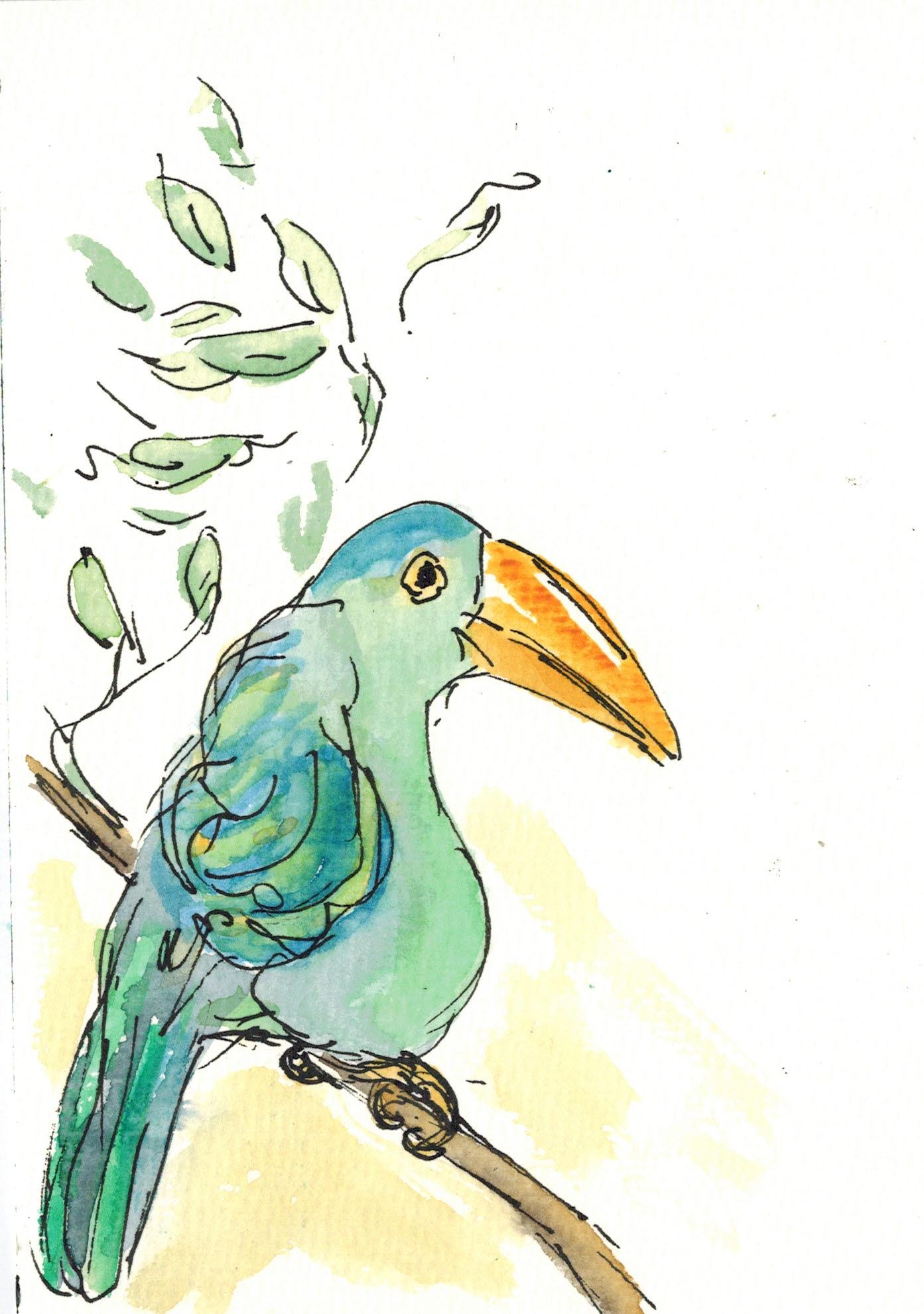 Federvögel3