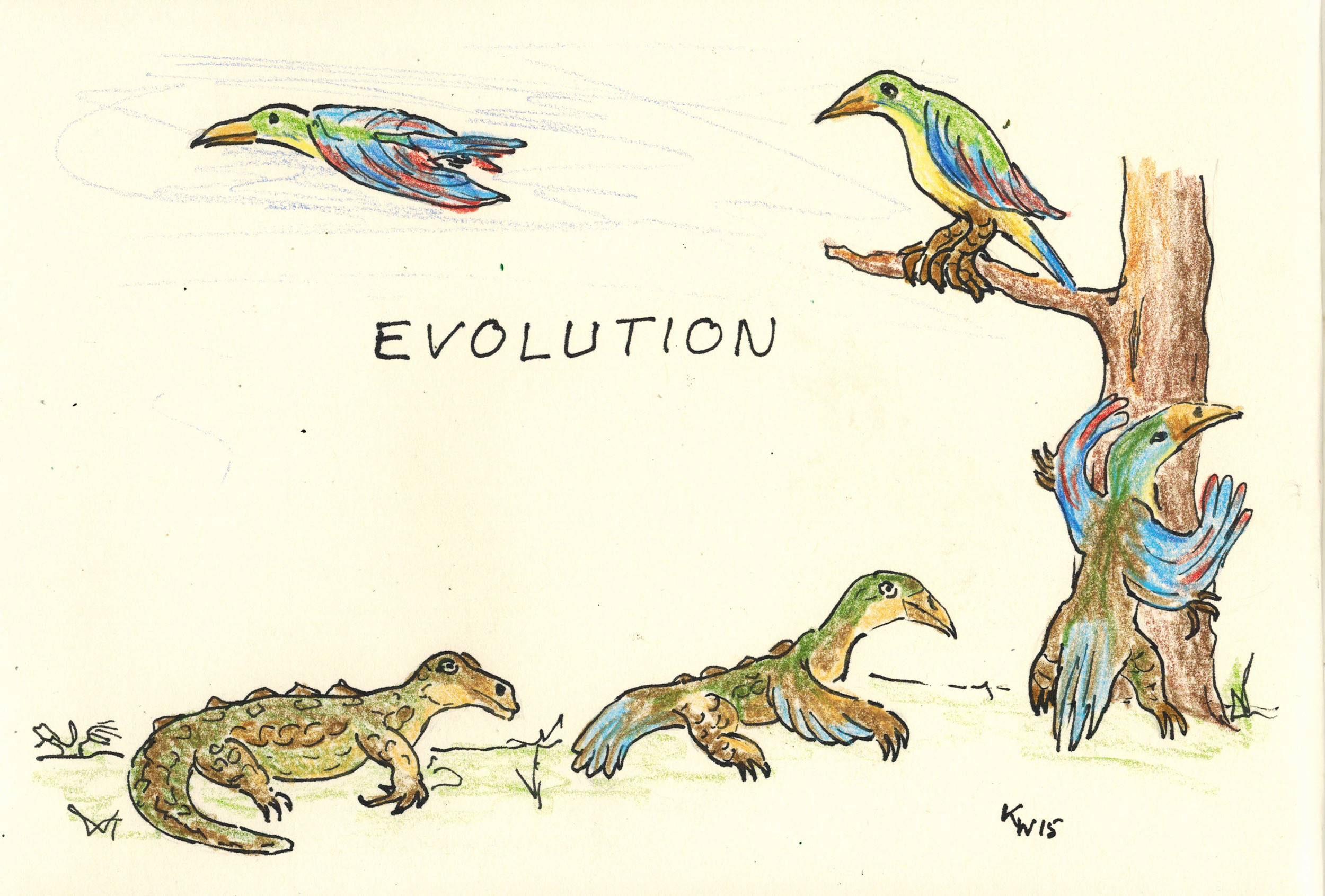 evolutionl.jpg11072015_0000
