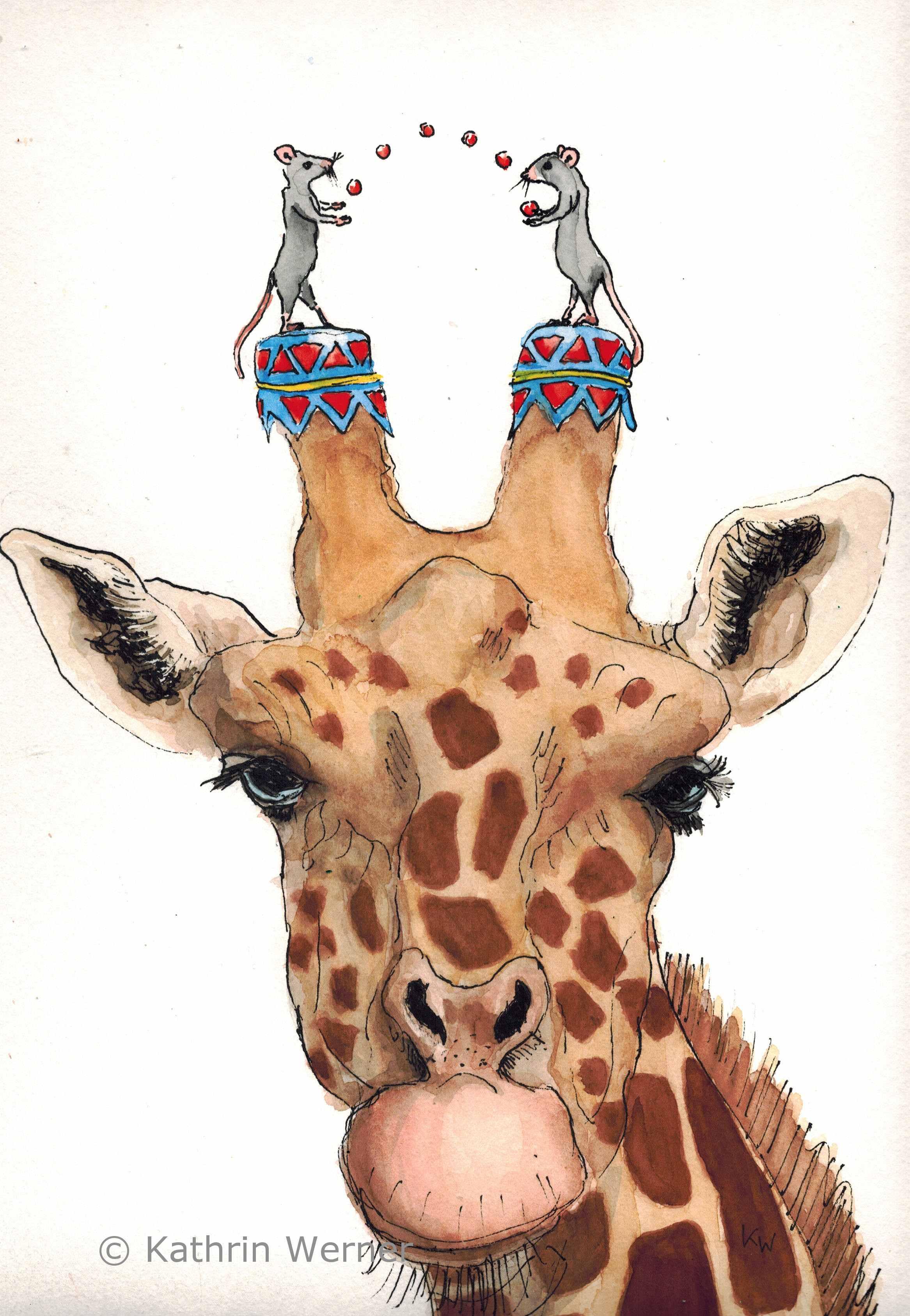 jan25_giraffeWZ